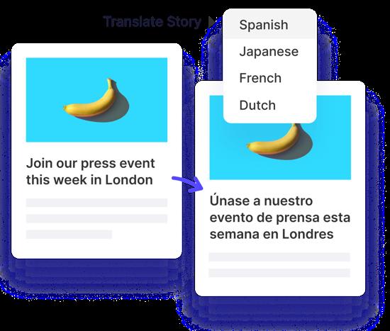 CMS publish content-languages@2x
